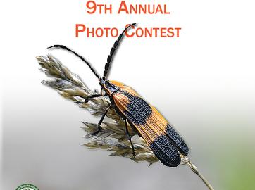 2019 Photo Contest Officially Open for Entries!