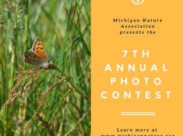 7th Annual Photo Contest Now Open!
