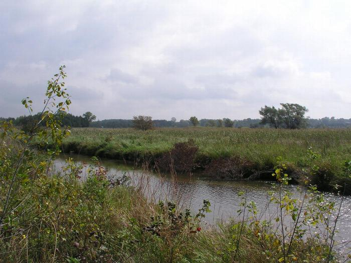 Goose Creek Grasslands Nature Sanctuary